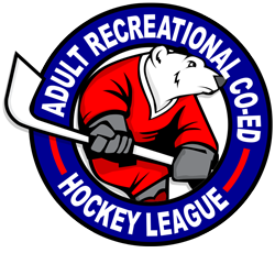 Adult Recreational Co-ed Hockey League