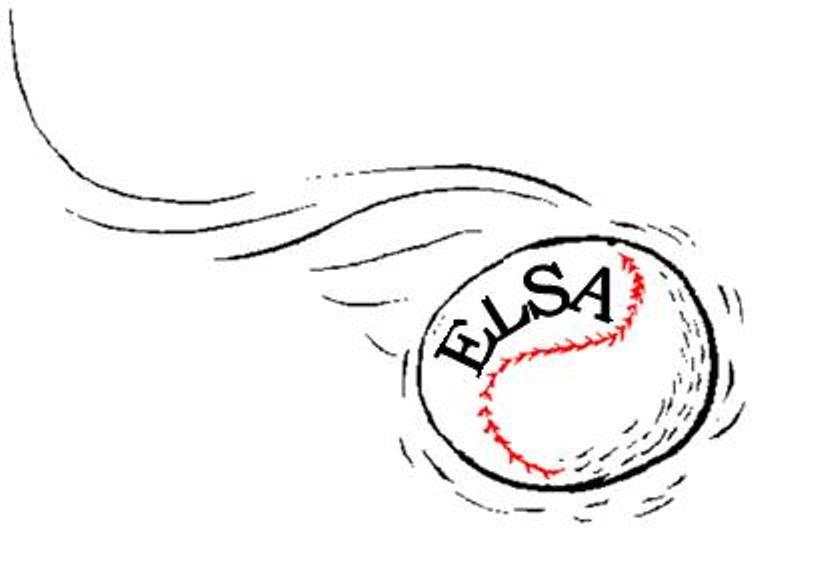 Edmonton Ladies Softball Association