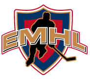 Edmonton Municipal Hockey Leagues
